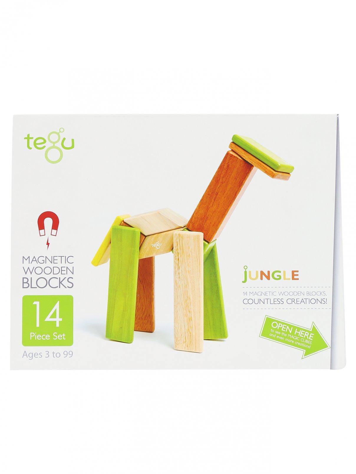 Конструктор Tegu  –  Общий вид